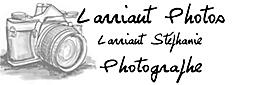 Larriaut