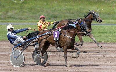 Jean-Claude Martin - Détresse d'un jockey qui se fait doubler avant la ligne d'arrivée